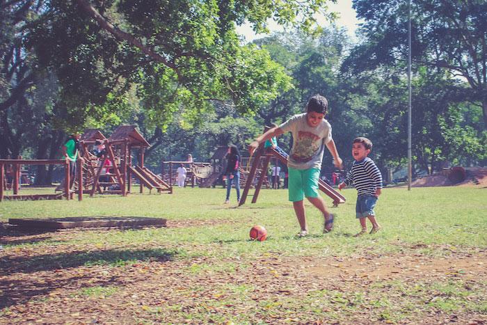 Ferias-Ibirapuera-jul15-12